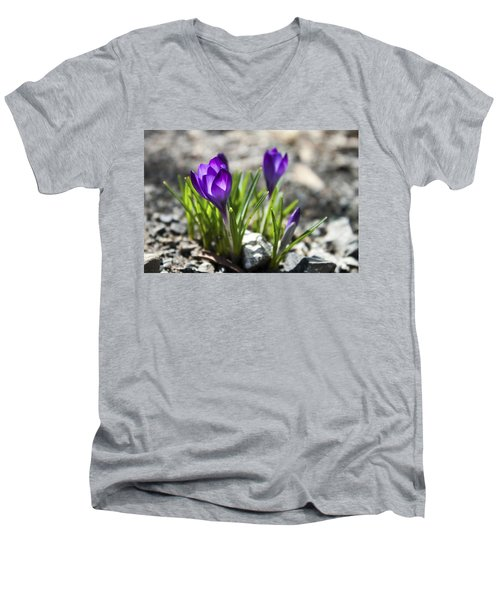 Men's V-Neck T-Shirt featuring the photograph Blooming Crocus #1 by Jeff Severson