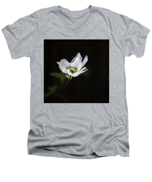 Blooming Dogwoods In Yosemite 3 Men's V-Neck T-Shirt