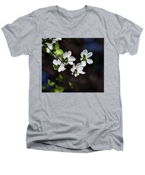 Blooming Dogwoods In Yosemite 4 Men's V-Neck T-Shirt