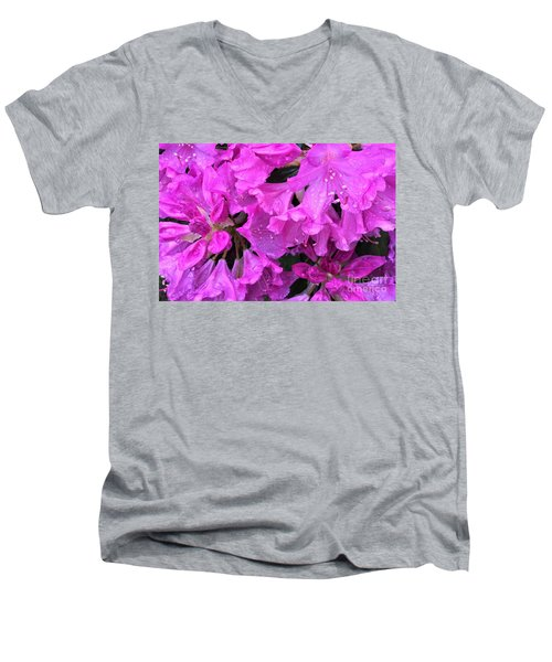 Blooming Rhododendron Men's V-Neck T-Shirt