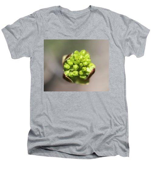 Blooming Star Men's V-Neck T-Shirt