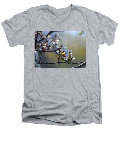 Blossoms Men's V-Neck T-Shirt by Betty-Anne McDonald