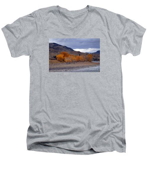 Men's V-Neck T-Shirt featuring the photograph Blue And Yellow  by Irina Hays