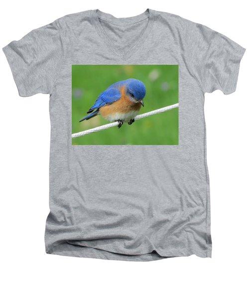 Blue Bird On Clothesline Men's V-Neck T-Shirt by Betty Pieper