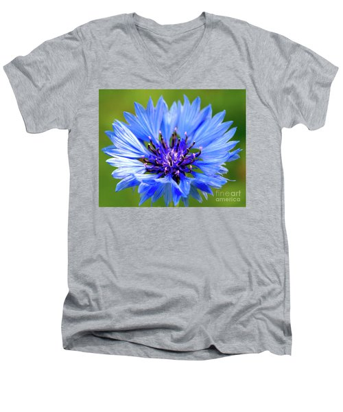 Blue Cornflower Men's V-Neck T-Shirt