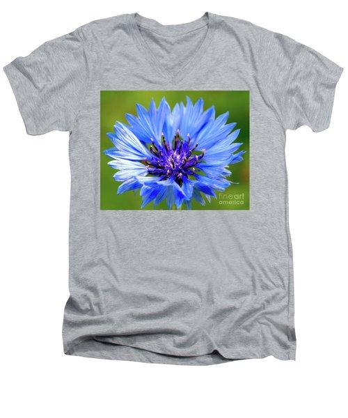 Blue Cornflower Men's V-Neck T-Shirt