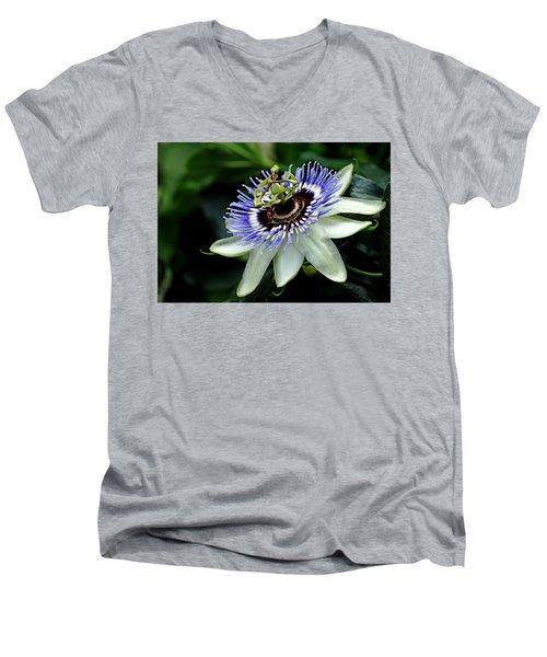 Blue Crown Passion Flower Men's V-Neck T-Shirt by Debbie Oppermann