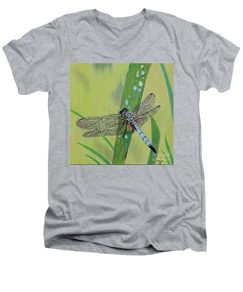 Blue Dasher Men's V-Neck T-Shirt