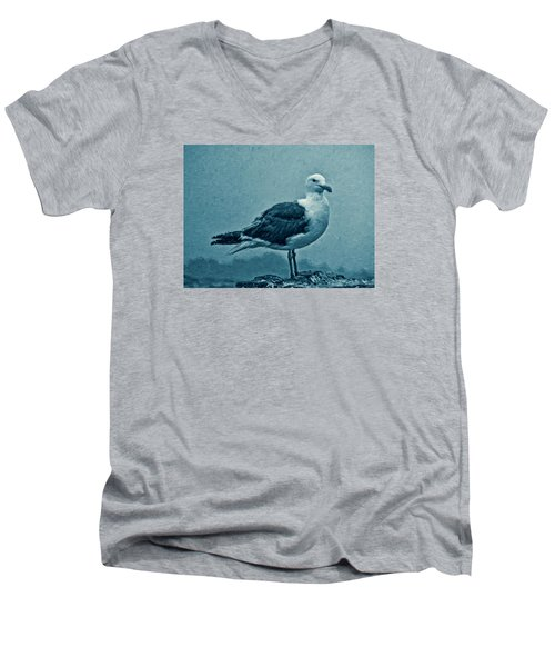 Blue Gull Men's V-Neck T-Shirt by Douglas MooreZart
