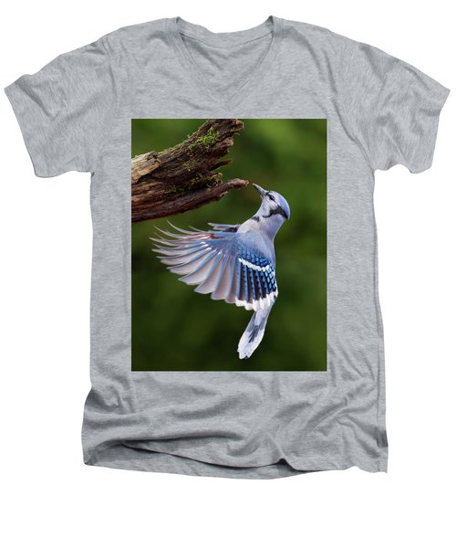 Men's V-Neck T-Shirt featuring the photograph Blue Jay In Flight by Mircea Costina Photography