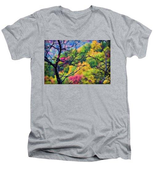 Blue Ridge Autumn Men's V-Neck T-Shirt