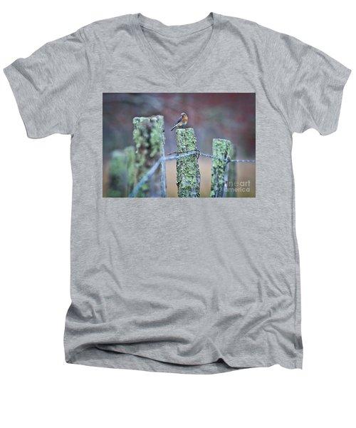Bluebird 040517 Men's V-Neck T-Shirt by Douglas Stucky