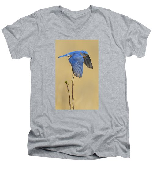 Bluebird Takes Flight Men's V-Neck T-Shirt