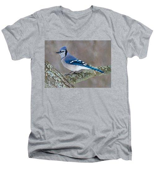 Bluejay 1357 Men's V-Neck T-Shirt by Michael Peychich