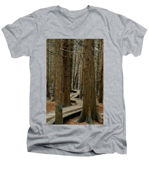 Boardwalk Among Trees Men's V-Neck T-Shirt by Scott Holmes