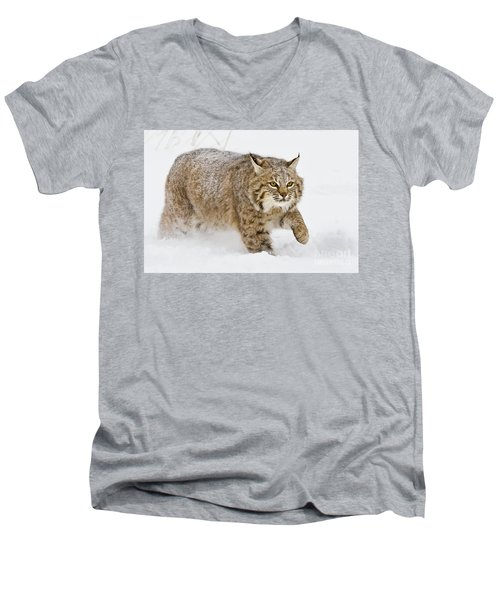 Bobcat In Snow Men's V-Neck T-Shirt