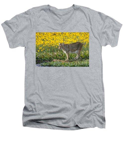 Bobcat In The Swamp Men's V-Neck T-Shirt by Myrna Bradshaw