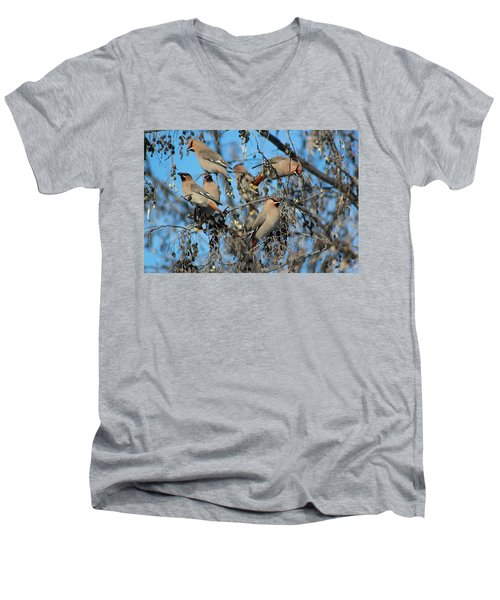 Men's V-Neck T-Shirt featuring the photograph Bohemian Waxwings by Kathy Bassett
