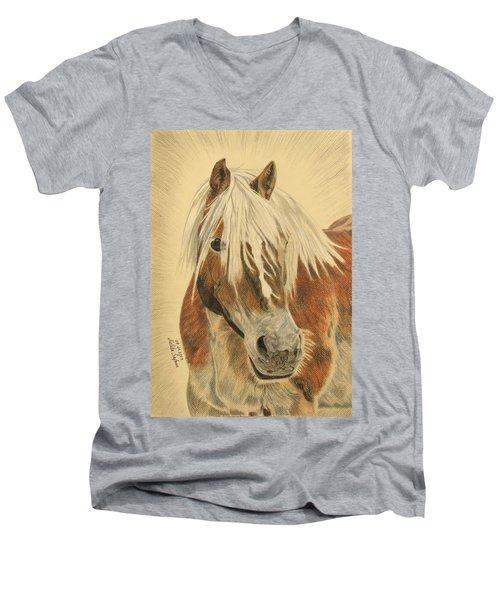 Bolero Men's V-Neck T-Shirt