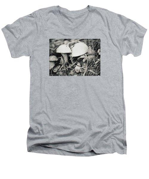 Boletus Mushrooms Men's V-Neck T-Shirt by Juls Adams
