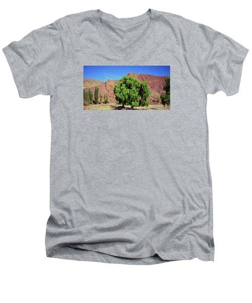 Bolivian Landscape  Men's V-Neck T-Shirt