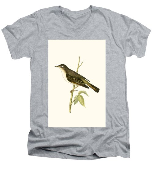 Bonelli's Warbler Men's V-Neck T-Shirt by English School