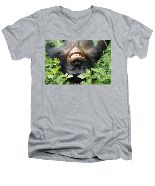 Bonobo Smiling Men's V-Neck T-Shirt