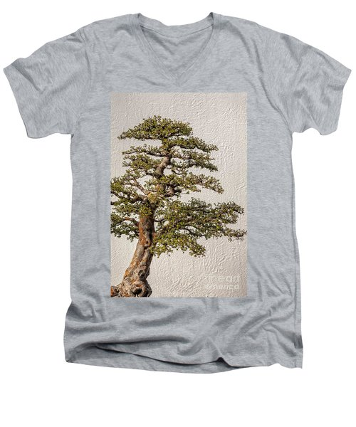 Bonsai Tree Men's V-Neck T-Shirt