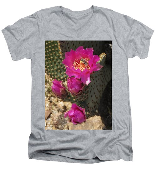 Borrego Springs Bloom 6 Men's V-Neck T-Shirt