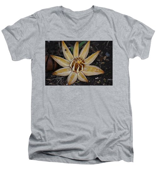 Botanical Garden Seed Pod Men's V-Neck T-Shirt by Lori Seaman