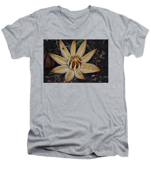 Botanical Garden Seed Pod Men's V-Neck T-Shirt