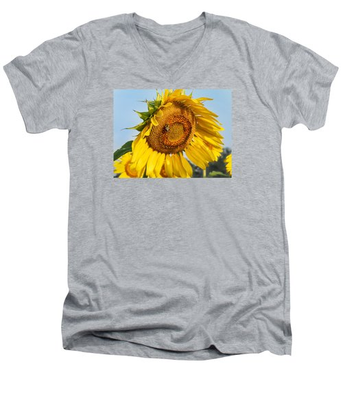 Bowed Sunflower Men's V-Neck T-Shirt