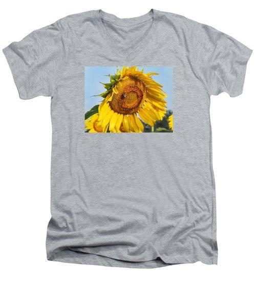 Bowed Sunflower Men's V-Neck T-Shirt