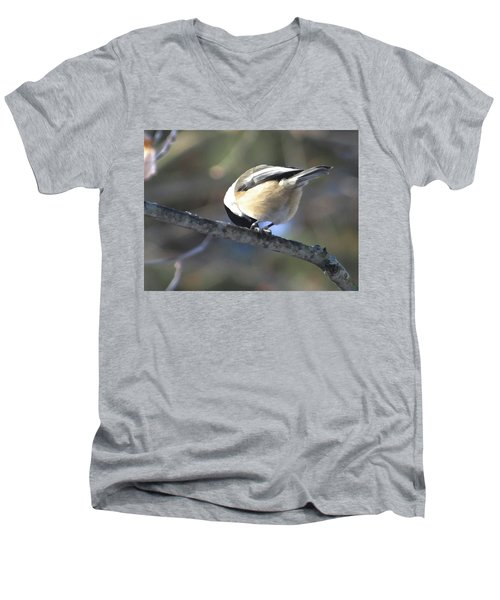Bowing On A Branch Men's V-Neck T-Shirt
