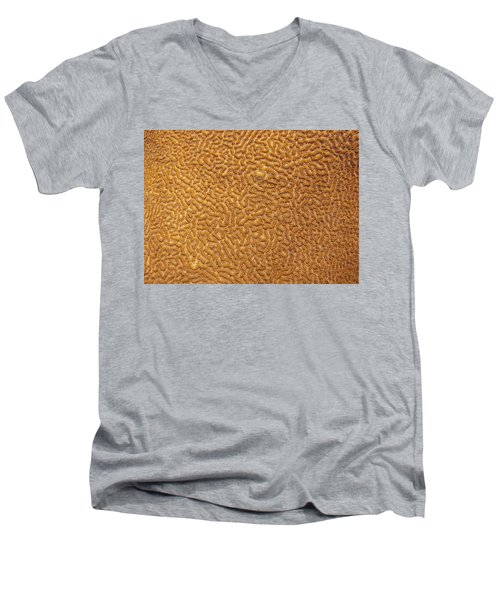 Brain Coral 47 Men's V-Neck T-Shirt