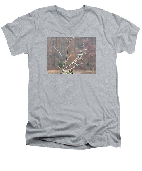 Branches In Ice Men's V-Neck T-Shirt by Craig Walters