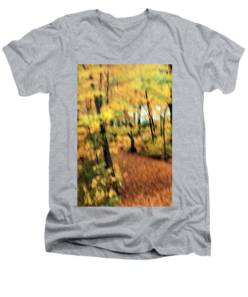 Breeze Men's V-Neck T-Shirt by Allen Beilschmidt