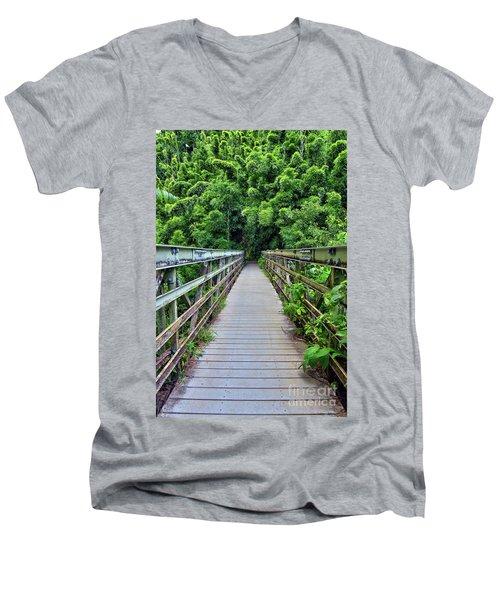 Bridge To Bamboo Forest Men's V-Neck T-Shirt