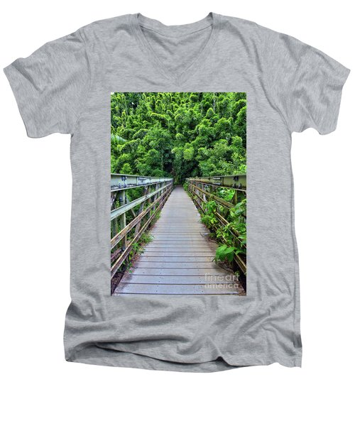 Bridge To Bamboo Forest Men's V-Neck T-Shirt