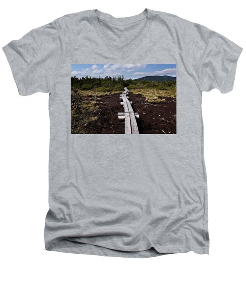 Bridge To Mizpah Men's V-Neck T-Shirt