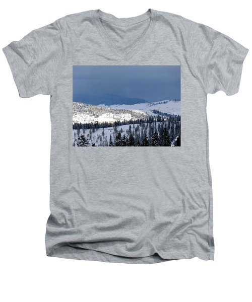 Men's V-Neck T-Shirt featuring the photograph Bright Patch Of Sunshine by Will Borden