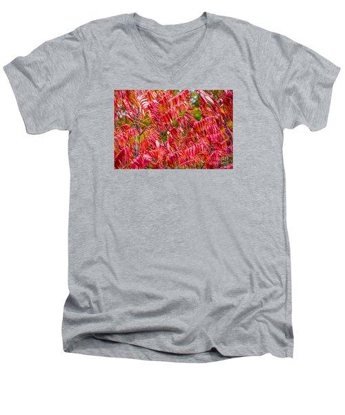 Bright Red Leaves Men's V-Neck T-Shirt