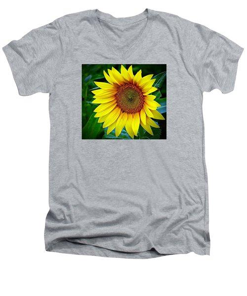 Brighten Your Day Men's V-Neck T-Shirt