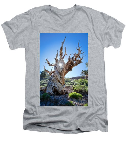 Bristlecone And Sun Men's V-Neck T-Shirt