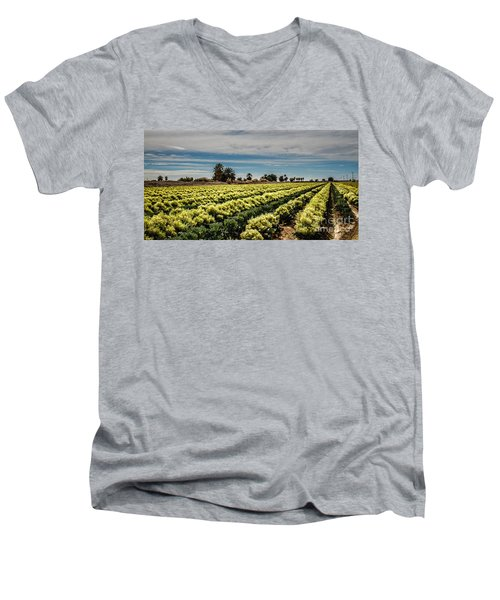 Broccoli Seed Men's V-Neck T-Shirt by Robert Bales