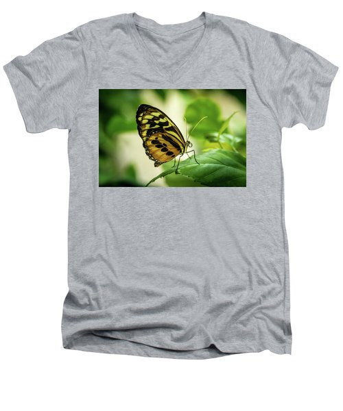 Brown And Black Tropical Butterfly Resting Men's V-Neck T-Shirt