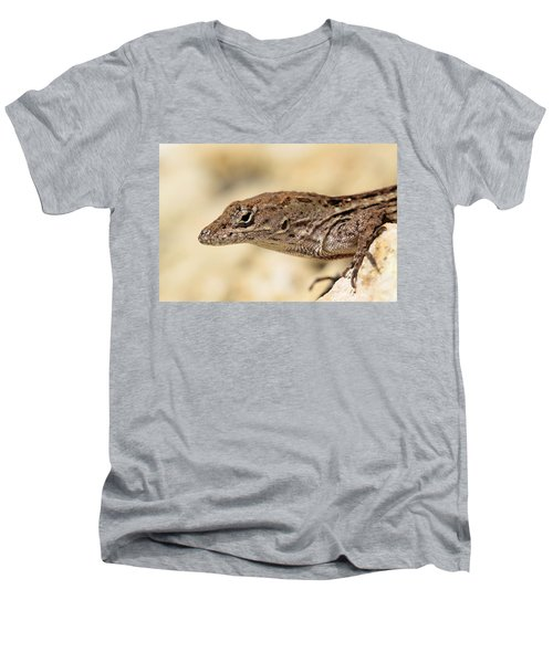 Brown Anole Men's V-Neck T-Shirt