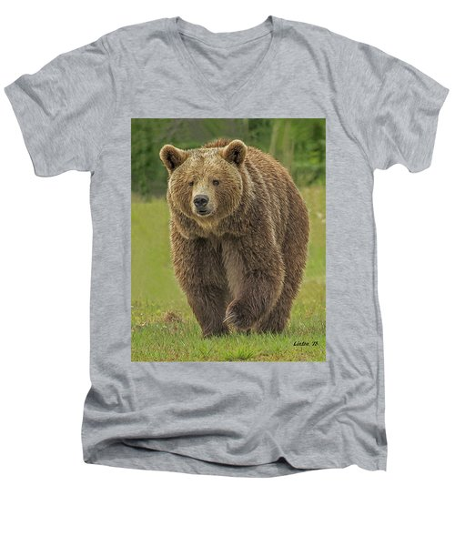 Brown Bear 1 Men's V-Neck T-Shirt