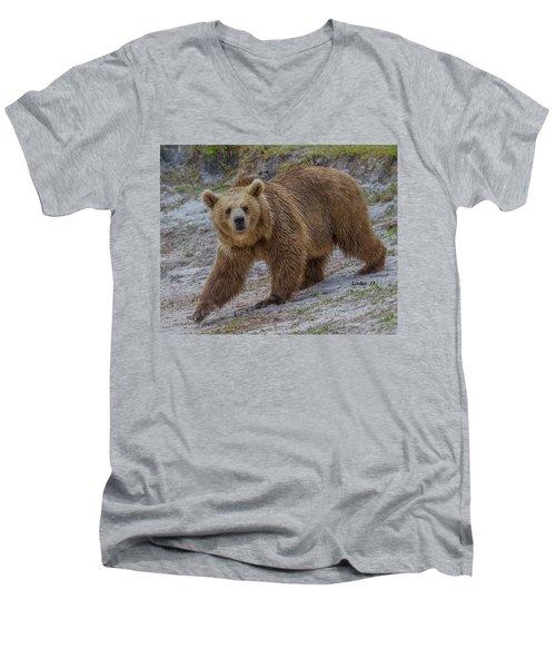 Brown Bear 3 Men's V-Neck T-Shirt