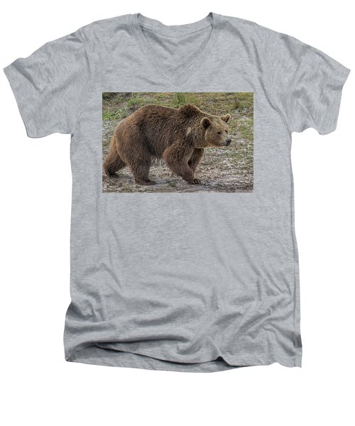 Brown Bear 6 Men's V-Neck T-Shirt